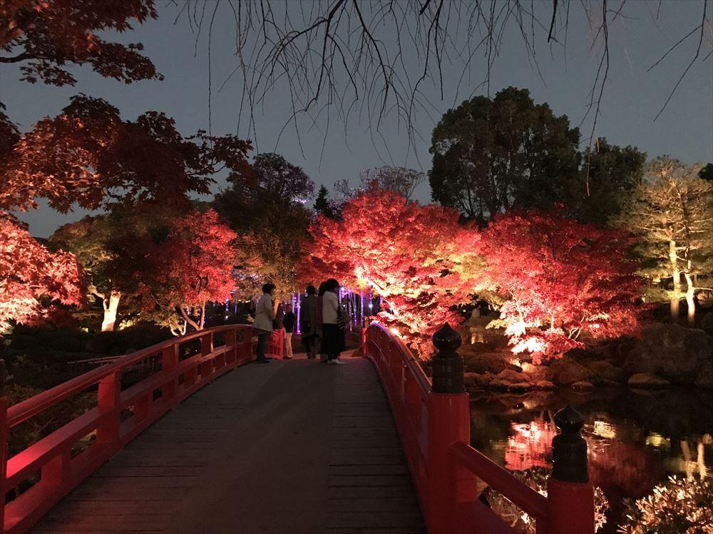 【由志園のライトアップイルミネーション2018】【赤い橋と紅葉】日本らしい風景。