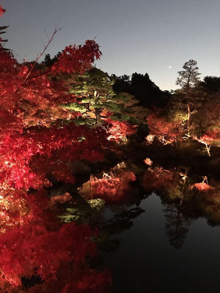 【由志園のライトアップイルミネーション2018】【池に映る紅葉】水面にゆれる紅葉はインスタ映えスポット