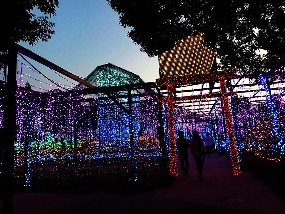 【由志園のライトアップイルミネーション2018】鳥居と富士山