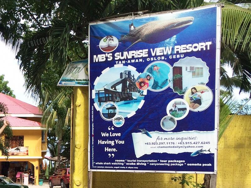 ジンベイザメのツアーMB's Sunrise View Resort